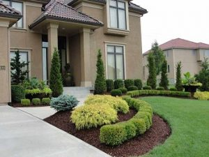 A Well-Maintained Kansas City Yard